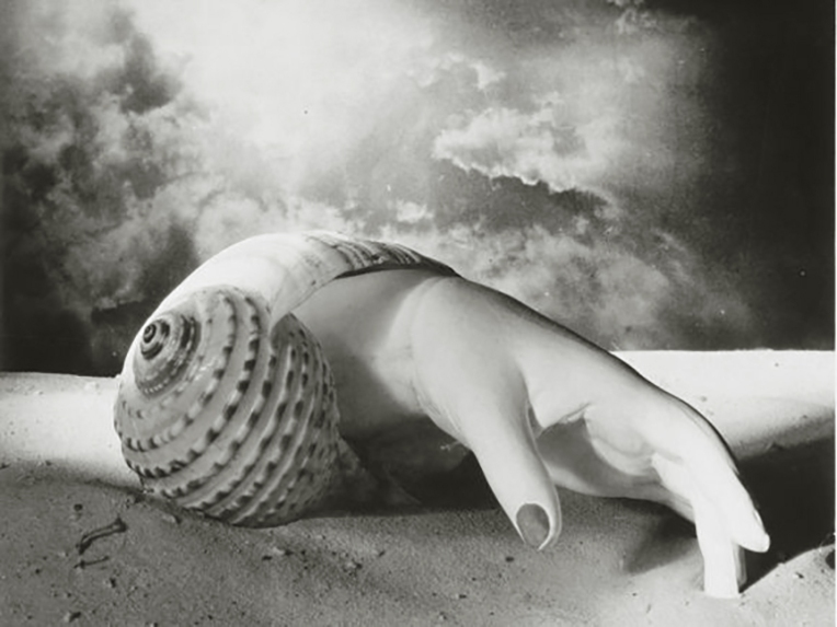 Hand and shell, by Dora Maar. Dora Maar, renowned Surrealist photographer and Picasso's fourth Muse and lover.