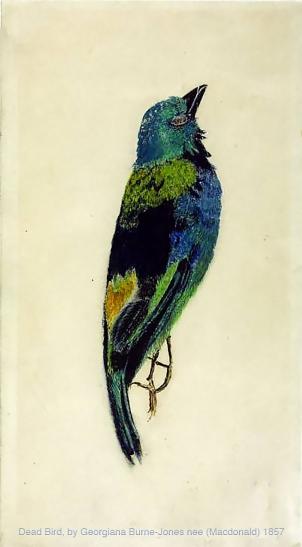 Dead Bird, by Georgiana Macdonald, later Georgiana Burne-Jones.